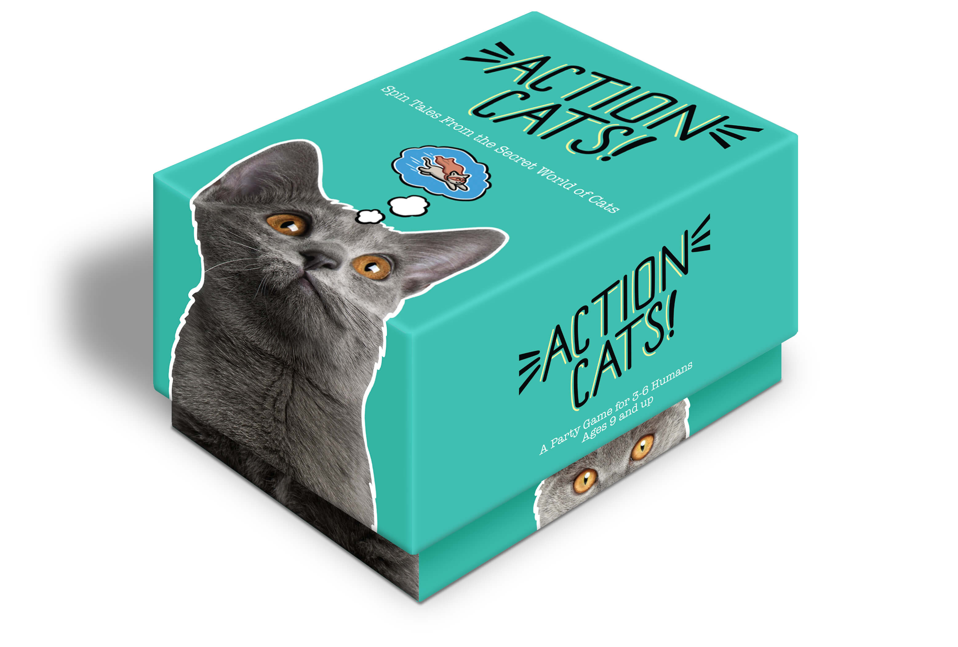 Action Cats box
